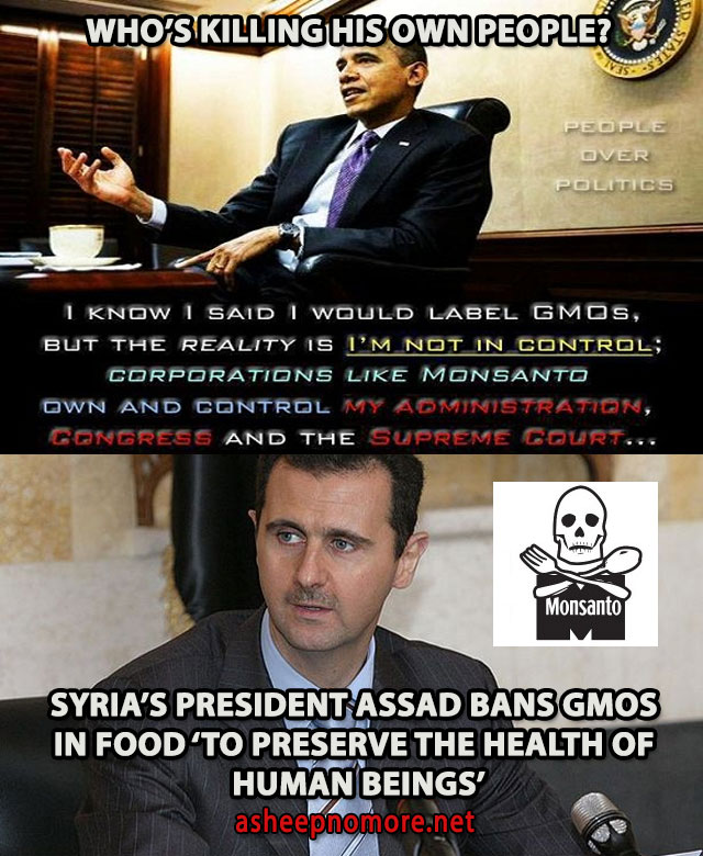 SYRIA-GMO-ASSAD-BANS-OBAMA-GIVES-MORE-POWER-WHOS-KILLING-WHO