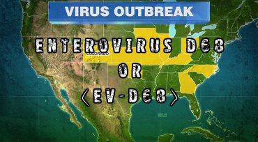 enterovirus-681