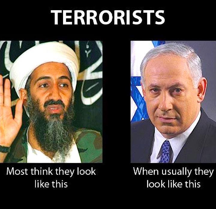 terrorist -1